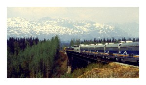Alaska State Train to Denali