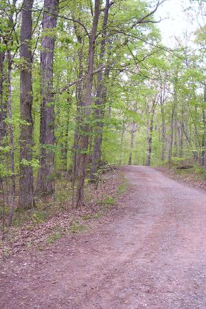 Ball's Bluff Regional Park Trails
