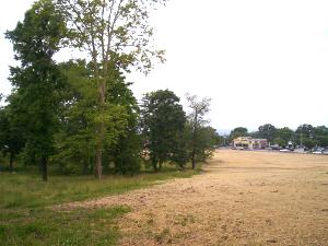 Ziegler's Grove