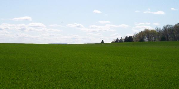 East Cavalry Field, Gettysburg