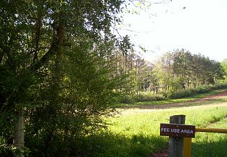 C.W. Phelps Wildlife Management Area