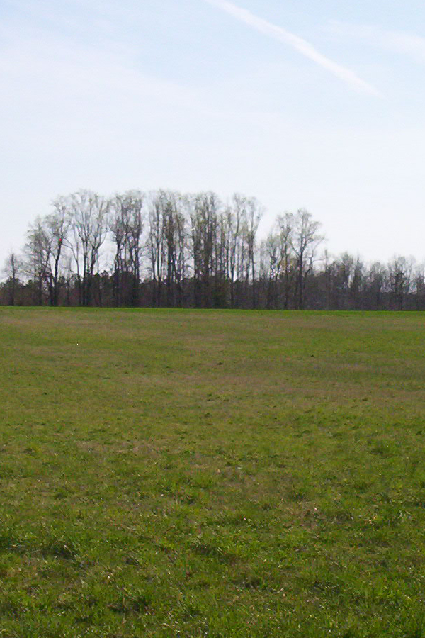 Five Forks Battlefield, Petersburg