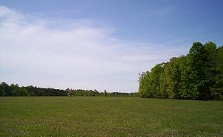 Widow Tapp Farm, Wilderness Battlefield