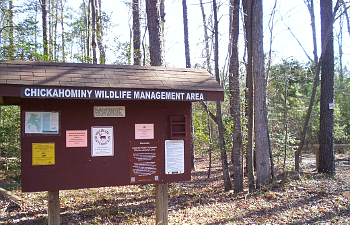 Chickahominy Wildlife Management Area
