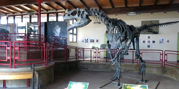Jurrasic National Monument