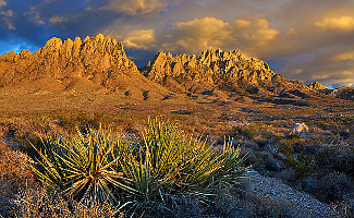 Organ Mountains Desert Peaks NM