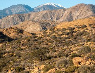 San Gorgonio Wilderness at Sand to Snow National Monument