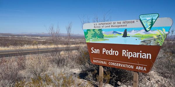 San Pedro Riparian NCA