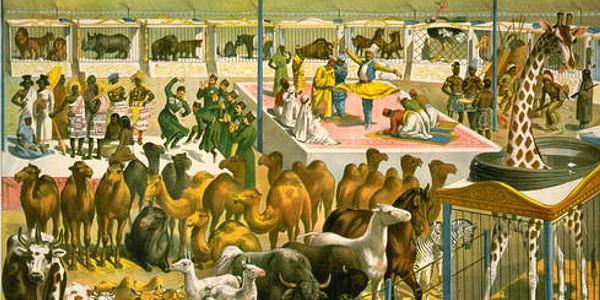 P.T. Barnum Circus