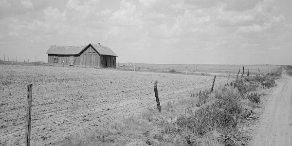 Roswell, New Mexico farm