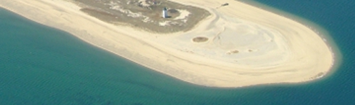Cape Cod Beach.