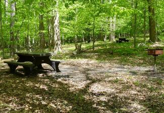 Owens Creek Campground