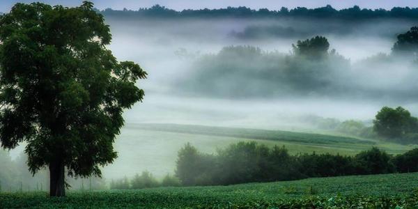 Chancellorsville National Battlefield