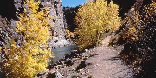 Pine Creek Trail at Curecanti NRA
