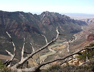 Split Mountain Canyon at Dinosaur National Monument