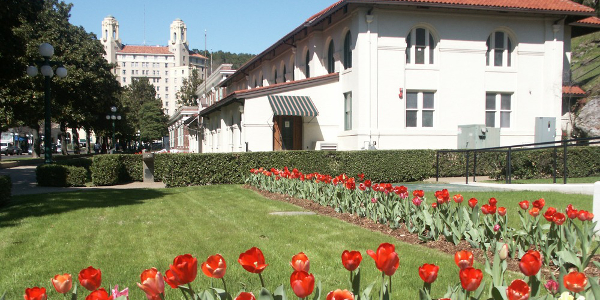 Tulips with Hale Bathhouse in the Background