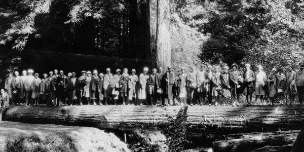 Visitors to Muir Woods