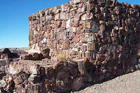 Petrified Forest, Agate House