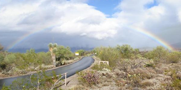 Rainbow over Saguaro National Park