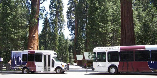 Shuttle Buses at Sequoia
