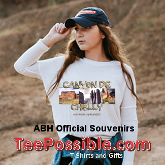 Teepossible T-Shirt and Gifts for Fun, Sports, and History