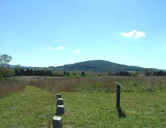Cedar Mountain Battlefield Trails