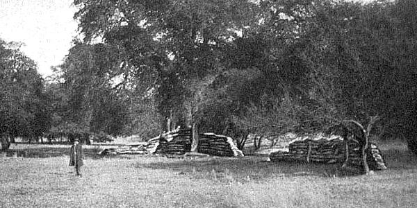 Ruins of Fort Buchanan, Arizona