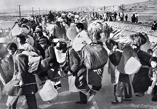 South Korean Refugees 1950
