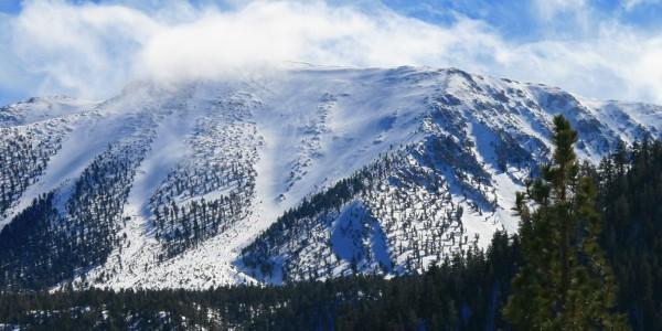 Sand to Snow National Monument, San Gorgonio Mountain