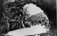 Skyline Drive Tunnel