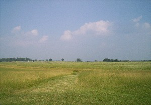 Ground of Pickett's Charge, Gettysburg, from Confederate position